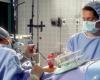 Взгляд на процесс донорства яйцеклеток