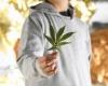 Профилактика наркомании и табакокурения