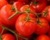 Экстракт помидора улучшает функцию кровеносных сосудов у больных на сердечно-сосудистые заболевания