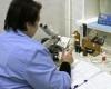 Лейкоциты в мазке повышены при беременности