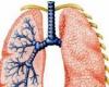 Курение и легкие, чистка легких после курения
